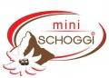 Gutscheine für miniSchoggi