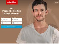 Screenshot von gayPARSHIP.ch